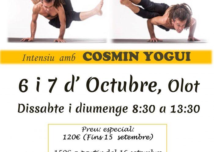 Cosmin a Olot - català